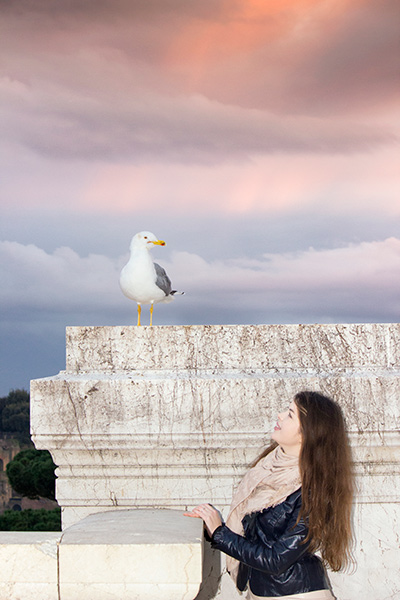 lady looks seagull standing at the top of building