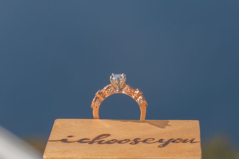 gay couple engagement ring